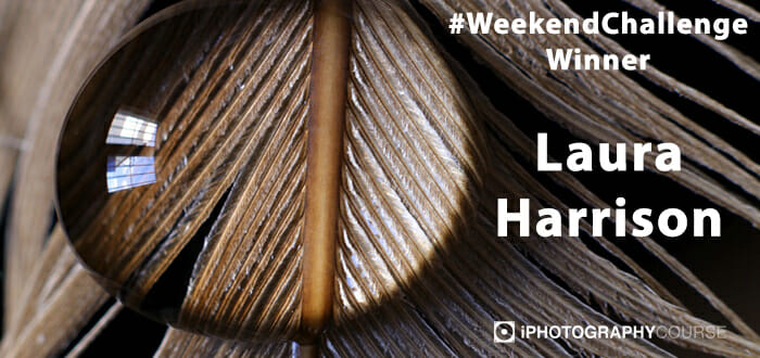 #potd #weekendchallenge iphotography guide win award social interaction photography training