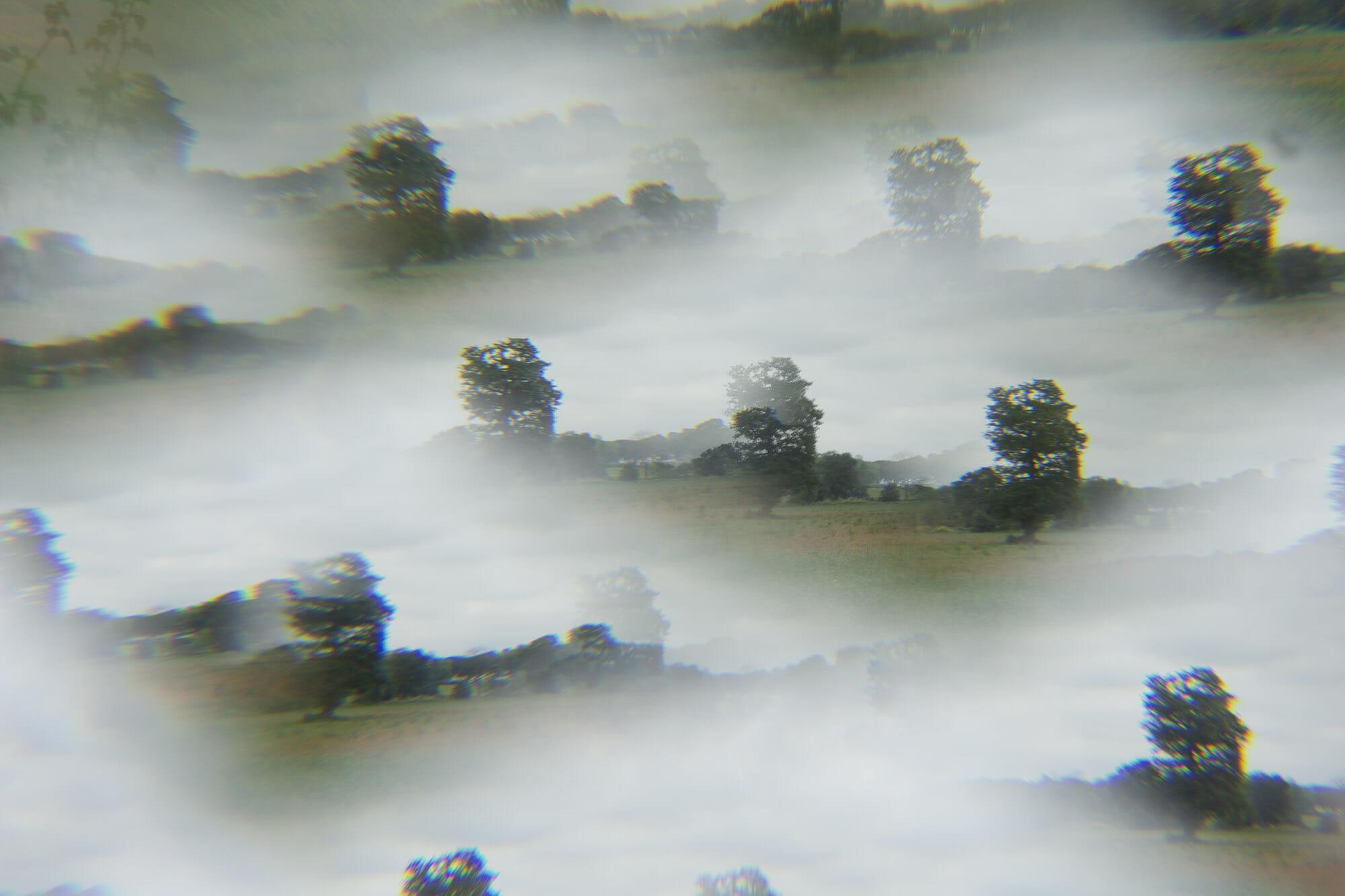 trees kaleidoscope effect photography