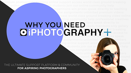 iPhotography+ iPhotography Plus community features