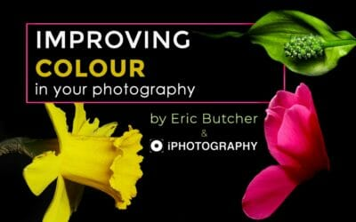 Improving Colour in your Photography