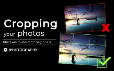 Cropping Your Photographs: Mistakes To Avoid