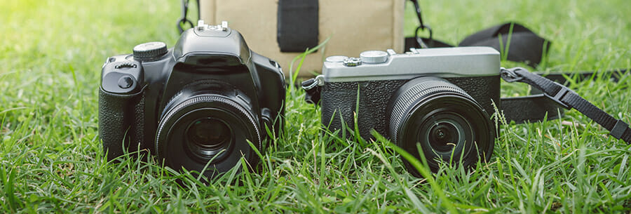 what camera is best iphotography mirrorless v DSLR cameras on grass