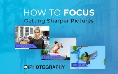 How to Focus: Getting Sharper Pictures