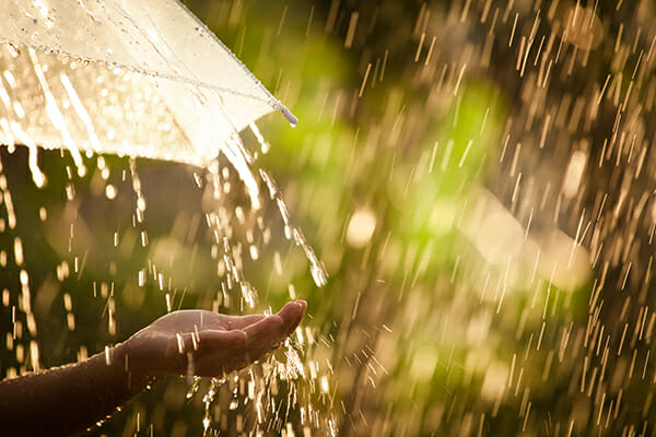 spring photography tips april showers 2