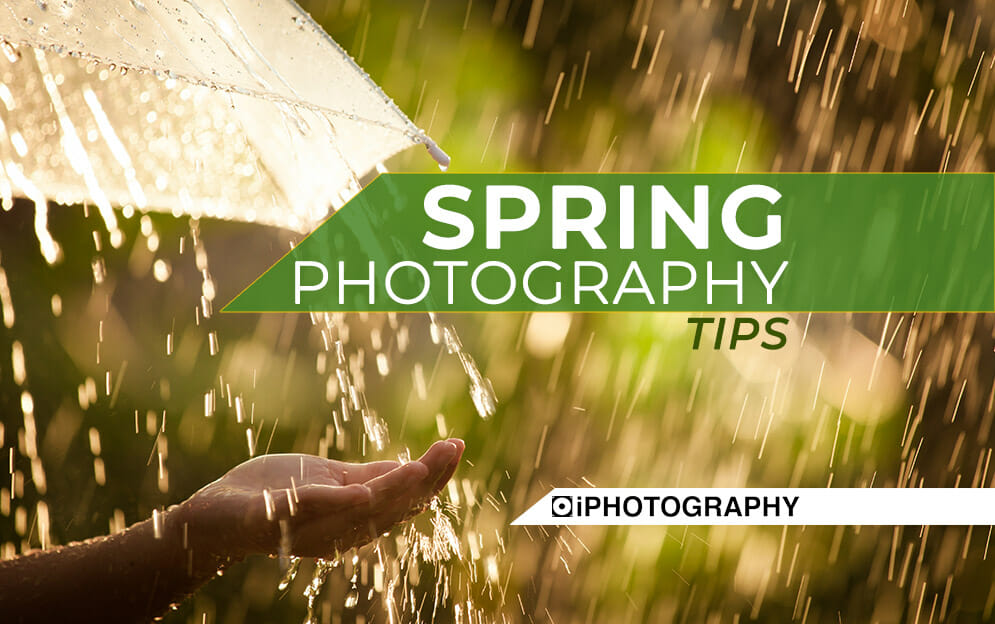 spring photography tips Blog