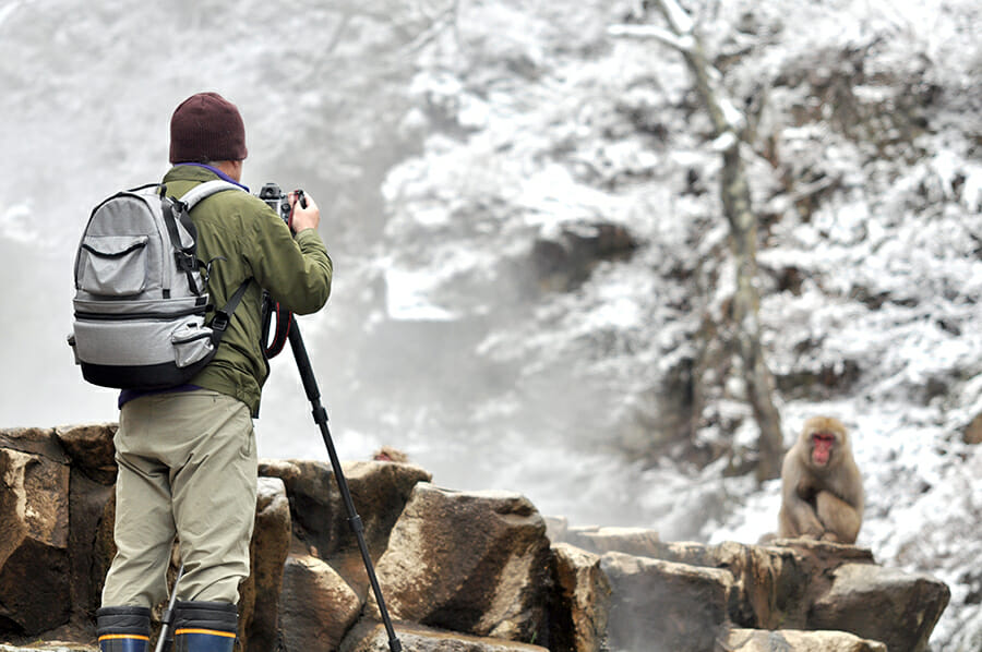 Photographer taking a picture of a Baboon in the snow