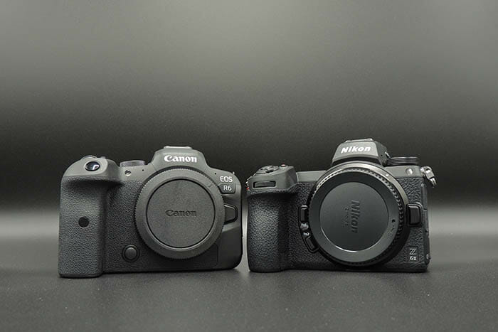 Canon v Nikon camera comparison image iPhotography Course