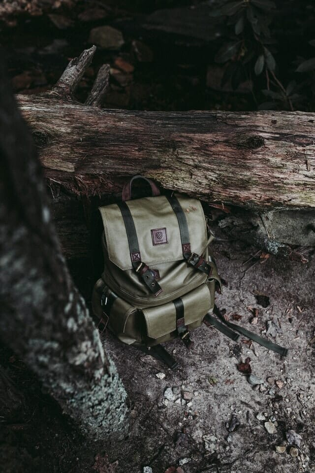 how to do product photography Camera bag next to a fallen tree trunk muted green colour