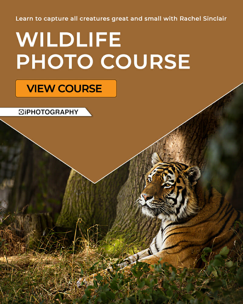 Join the iPhotography course