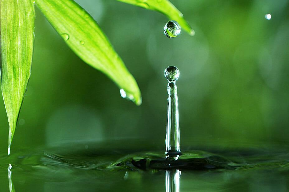 Water Drop Photography Tutorial