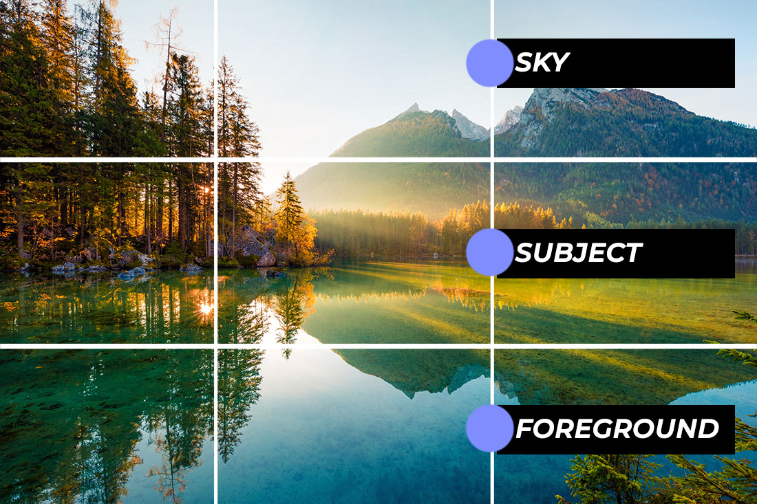 nature photography tutorial